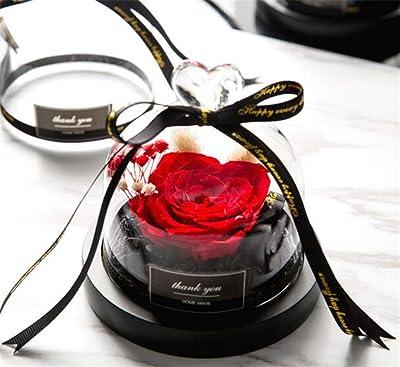 Amazon.com: JLDN - Flor conservada en cristal, rosa ...