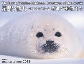 カレンダー2022 星野道夫カレンダー「極北の動物たち」ベストセレクション (月めくり・壁掛け) (ヤマケイカレンダー2022)