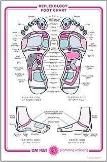 CafePress - Large Reflexology Chart Poster - 23