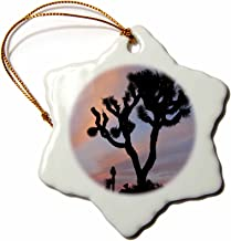 3dRose ORN_88504_1 Joshua Tree NP, Joshua Tree at Sunrise - US05 JWI0273 - Jamie and Judy Wild - Snowflake Ornament, Porcelain, 3-Inch