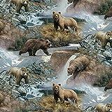 Bear Cotton Fabric by The Yard, Precut 1 Yard Pieces