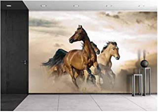 wall26 - Beautiful Horses of Different Breeds Running in Dust on Sunset - Removable Wall Mural | Self-Adhesive Large Wallpaper - 66x96 inches