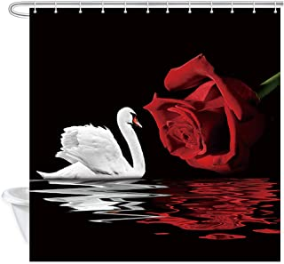 Best white beach roses Reviews