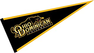 College Flags and Banners Co. Ohio Dominican Panthers Pennant