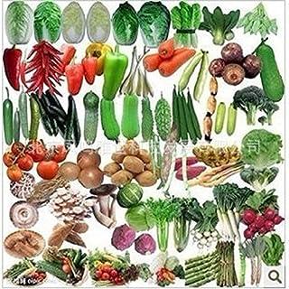 semillas de hortalizas orgánicas calientes verduras paquete de balcón mezcla de semillas 50seed