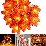 Autumn Garland Maple Leave String,Fall Maple Leaf Garland 20/40 LED Maple Leaves Fairy Lights Garland Decorations Lights Waterproof 3AA Battery Operated/USB (Maple leaf, battery 20FT)