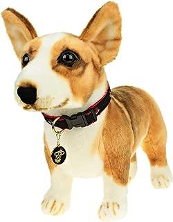 Sporty K9 NBA Dog Collar