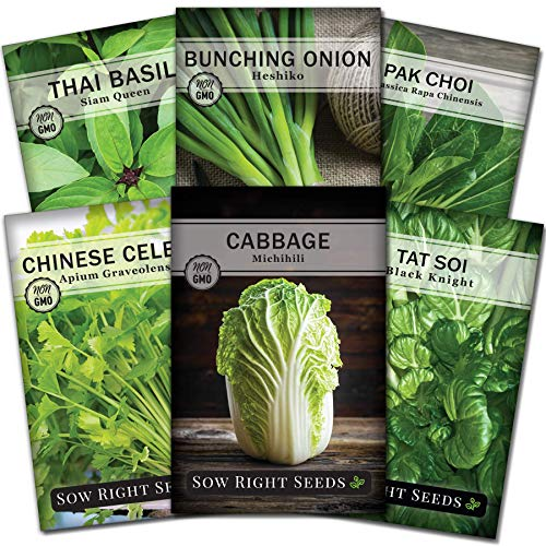 Sow Right Seeds - Asian Greens Collection for Planting - Individual Packets Thai Basil, Japanese Bunching Onion, Pak Choi, Chinese Celery, Michihili Cabbage and Tat SOI, Non-GMO Heirloom Seeds
