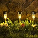 12-Pack Sowsun Outdoor Solar Pathway Lights