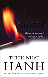 Anger: Buddhist Wisdom for Cooling the Flames (English Edition)