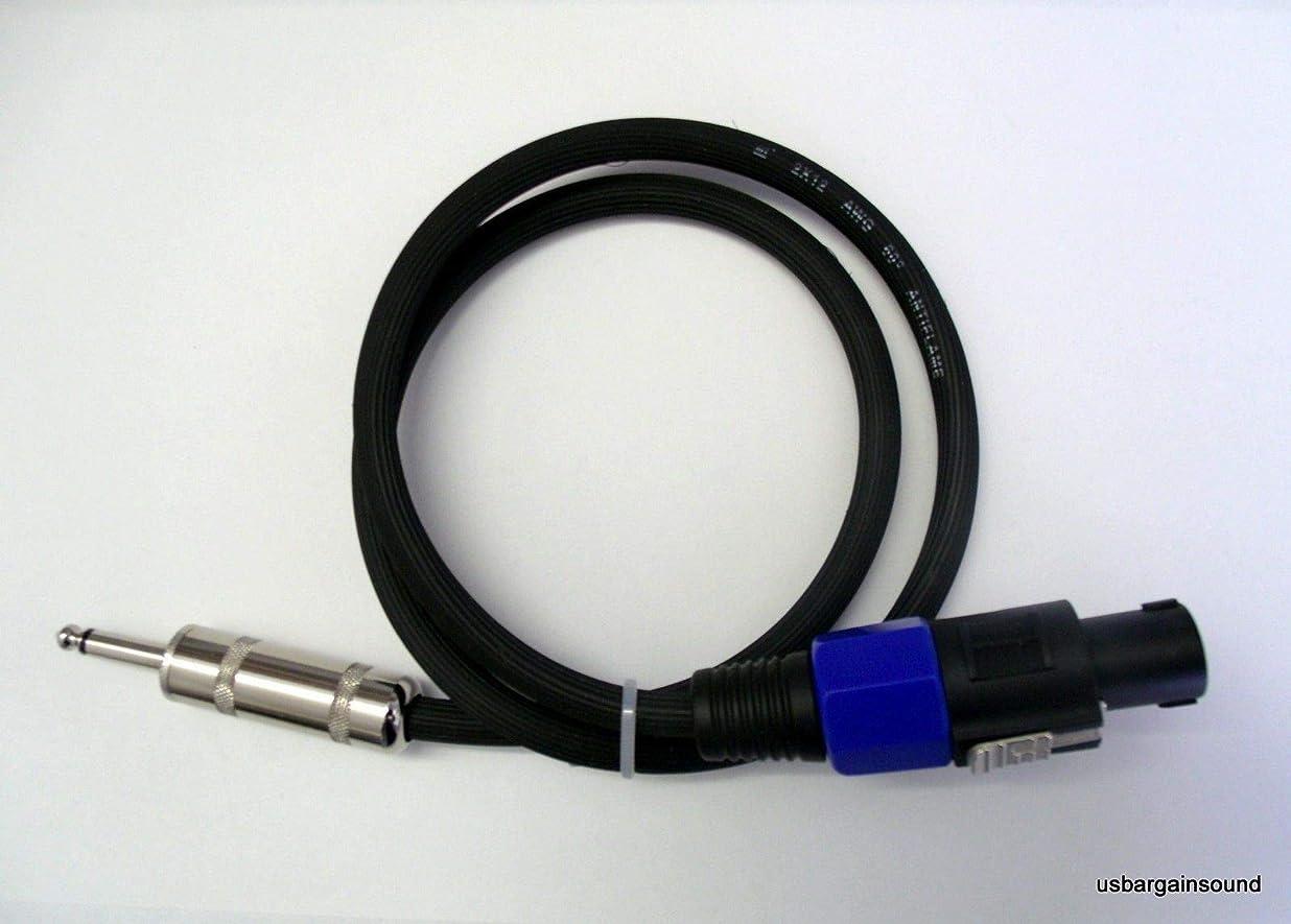 批判的に保護する変形するProCraft スピーカーケーブル 10フィート 12ゲージ 1/4インチのコネクタ