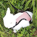 Happy Hachi Confortevole Imbracatura per Coniglio con Elastico Guinzaglio Morbido Pettorina Traspirante per Piccoli Animali Criceti Gatti(S Rosa)
