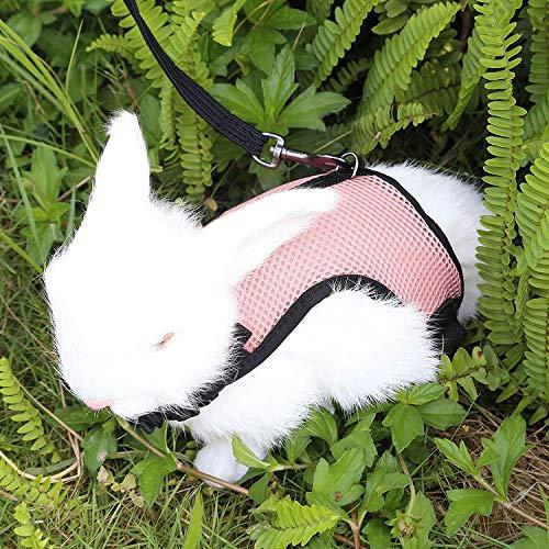 Petcomer Arnés Conejos con Correa Elástica para Animales Pequeños Conejos Hámsteres Gatos(S, Rosa)