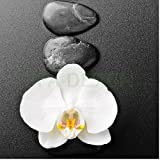SLV1018 Sticker Cuisine Lave Vaisselle Galet Orchidée 60x60cm (Fond Blanc)