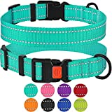 CollarDirect Reflective Dog Collar,SafetyNylon Collars for Dogs with Buckle,Outdoor Adjustable Puppy Collar Small Medium Large (Neck Fit 10'-13', Mint Green)
