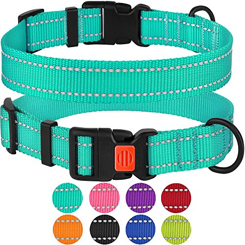 "CollarDirect Reflective Dog Collar, Safety Nylon Collars for Dogs with Buckle, Outdoor Adjustable Puppy Collar Small Medium Large (Neck Fit 10""-13"", Mint Green)"