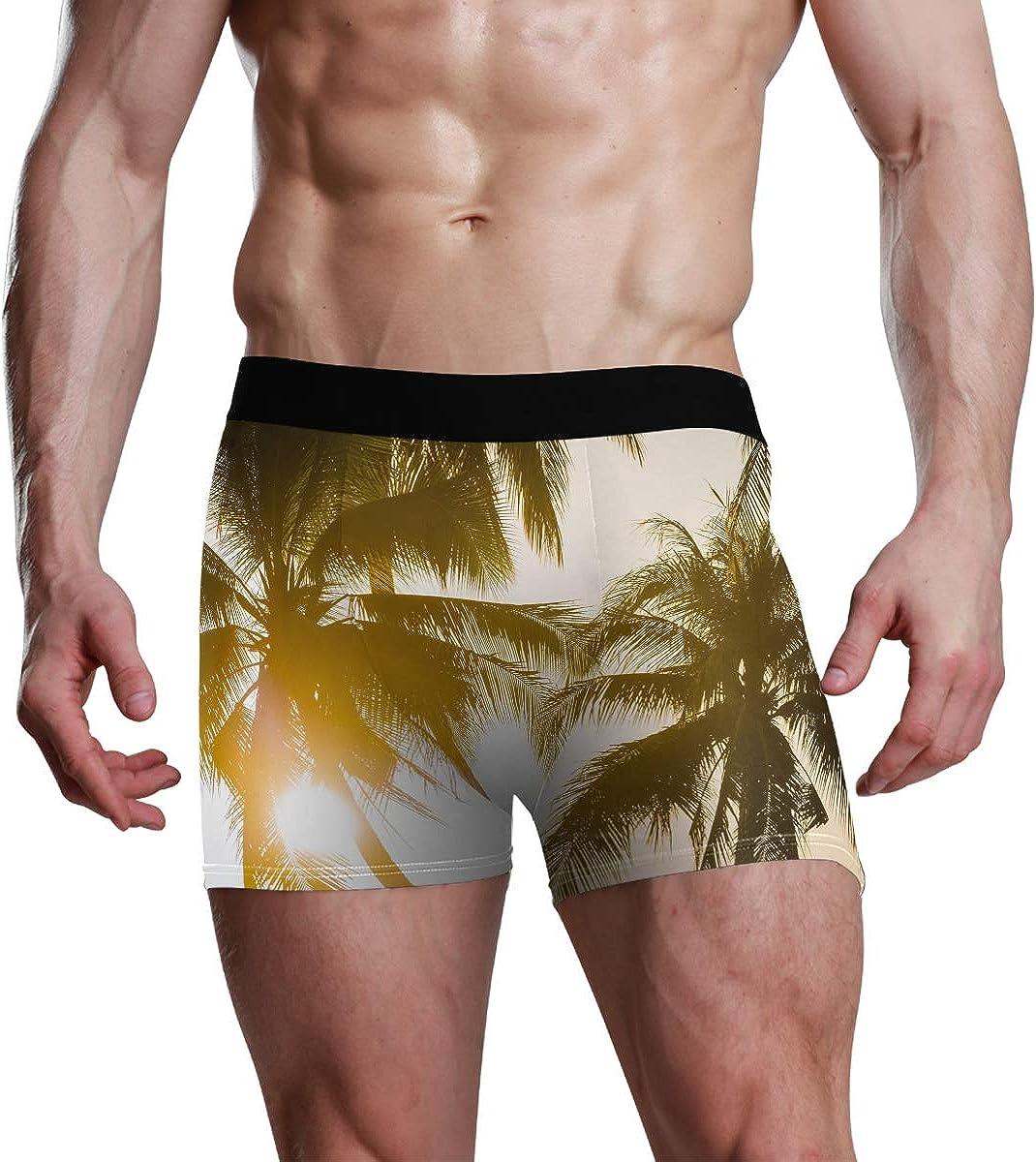 Mens Underwear Briefs Last Light of The Evening Sun Set with Coconut Tree Breathable Long Boxer Briefs Underwear Boys