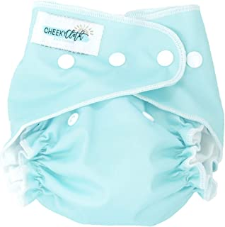 Cheeky Cloth One Size Reusable Swim Diaper (Tame Teal)