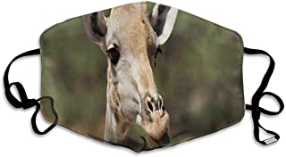 What Color is A Giraffe's Tongue Dust Masks Reusable Cotton Breathable Safety Respirator for Outdoor Cycling Face Earloop Masks Dust Pollen Flu Germs Allergens Masks