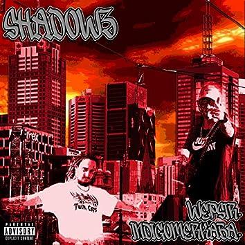 Shadowz (feat. IndigoMerkaba)