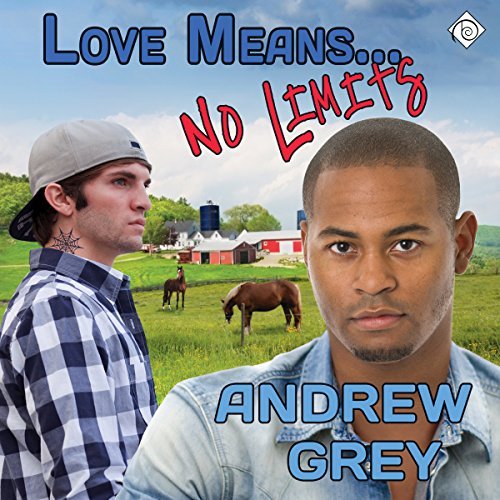 Love Means... No Limits cover art