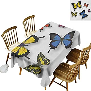 kangkaishi 3D Printed Long Tablecloth Desktop Protection pad Various Colorful Butterflies Pattern and Moths with Grace of Nature Themed Wings W60 x L84 Inch Multicolor