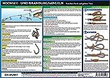 Hochsee- und Brandungsangeln: Frischer Fisch auf jedem Törn