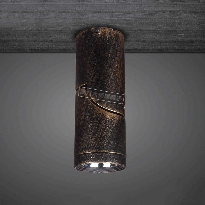 Lionze Retro Bronze Oberflchenmontage Zylinder Kommerzielle Deckenleuchten Einstellbare Panel Downlight Scheinwerfer LED Energiesparende Flachbefestigung (Farbe   Weiß Light, Gre   7w)