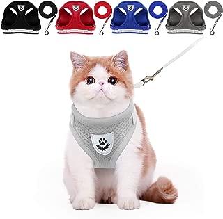 Best cat collar harness Reviews