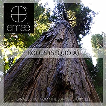 """Roots (Sequoia) [From """"The Sunrise Storyteller""""]"""