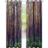 Cortinas para dormitorio, bosque en la mañana, troncos de árboles altos, verde y medio ambiente natural, 52 x 84, cortinas opacas para comedor, verde y marrón
