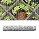 TINVHY 72 Inch x 50 ft Galvanized Hexagonal Wire Poultry Netting Mesh for Craft Projects and Gardening Metal Mesh Fencing/Chicken Wire