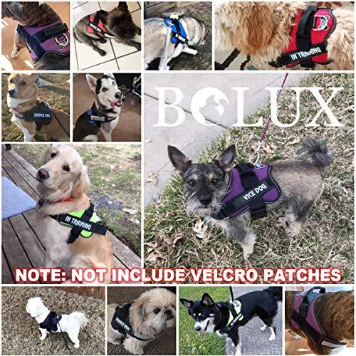Bolux Dog Harness