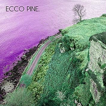 Ecco Pine