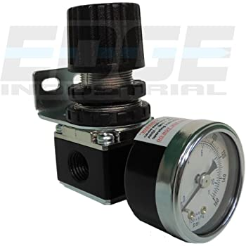 """MINI PRESSURE REGULATOR FOR COMPRESSED AIR SYSTEMS, 1/4"""" NPT PORTS, ADJUST 7 TO 140 PSI"""