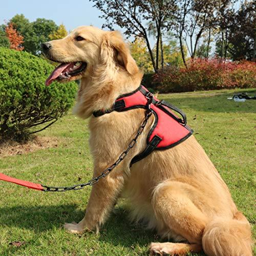 Shunai Chaleco para mascotas con arnés para perro que no se tira ...