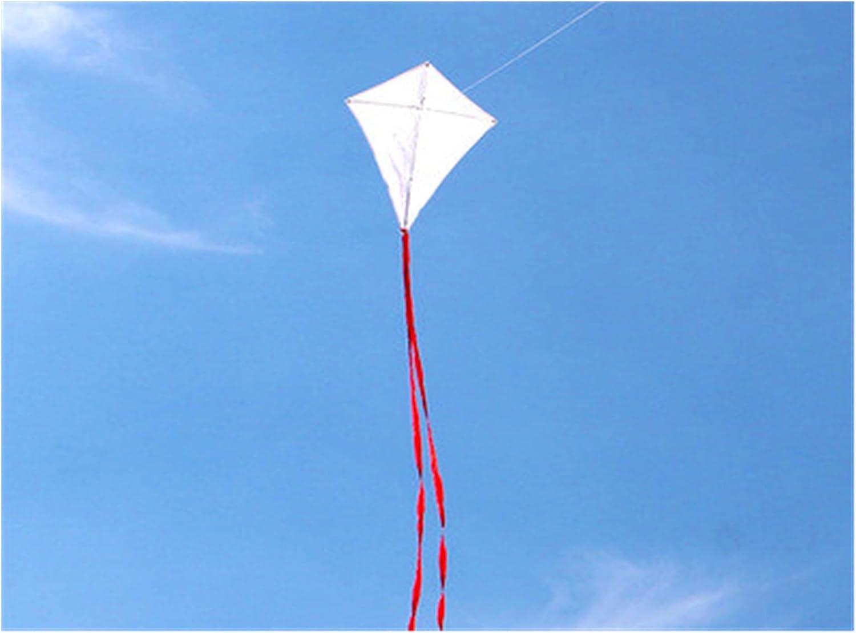 LJLWX Outdoor Austin Mall Kite Blank DIY Direct stock discount 100pcs Painting Teaching lot K