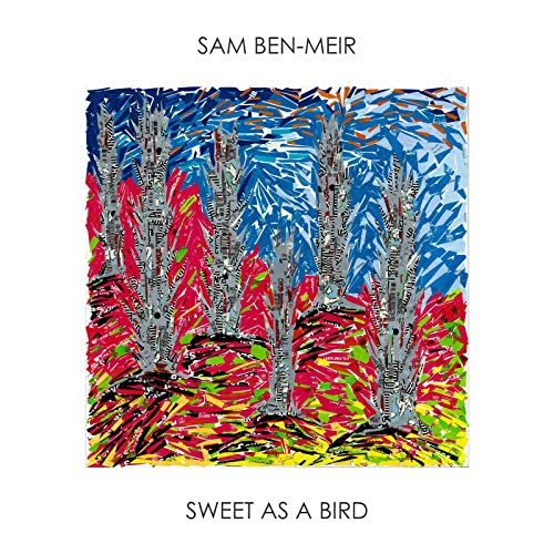 Sam Ben-Meir