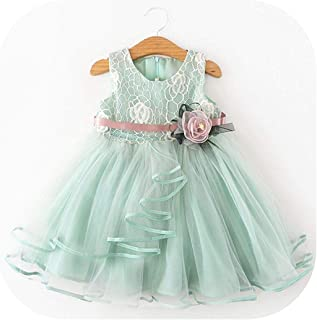 Surprise S Cute Flower Girls Embroidery Dress Girls Summer Party Appliques Ball Gown Kids Casual Clothing