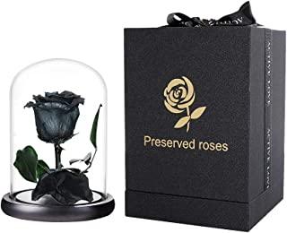 Preserved Rose Black Forever Roses Real Rose in Glass Dome, Eternal Roses Never Withered Flower Gifts for Female, Valentine's Day, Mother's Day, Birthday, Christmas (6.7 inch)
