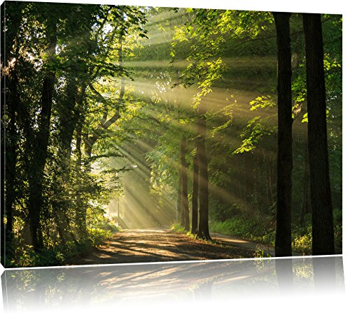 Pixxprint Waldweg im Frühling als Leinwandbild | Größe: 80x60 cm | Wandbild| Kunstdruck | fertig bespannt