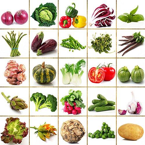 semences de légumes 200 graines famille balcon pot jardin quatre saisons de plantation de fruits et légumes