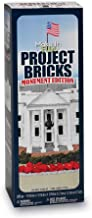 FloraCraft Foam 285 Piece Project Bricks Monument Edition 0.6 Inch x 0.6 Inch x 1.4 Inch White
