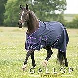 Manta de caballo sin cuello Gallop Trojan EU 125cm 200g