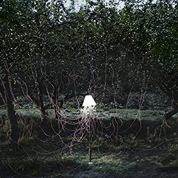 Escapements Remixes II