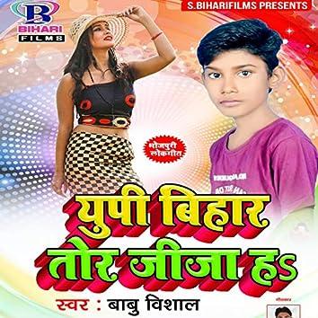 UP Bihar Tor Jija Ha - Single