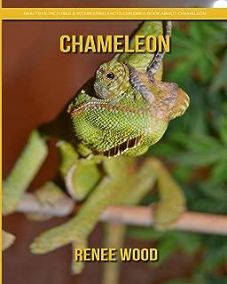 chameleon habitat pictures