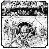 Songtexte von Insanity Alert - 666-Pack
