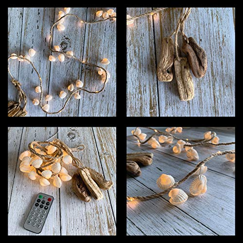 Seashell Decorative String Lights, TAMOYO Bedroom Decoration Lights About 4.59 FT 36 LEDs Battery Operated Ocean Theme String Lights for Party, Wedding, Birthday, Garden, Bedroom, Indoor Outdoor Décor