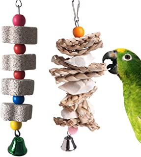 PIVBY Parrot Toys Chewing Bird Toy Cuttlebone Beak Grinding Stone Cage Hanging Toys with Bell for African Greys Amazon Conure Eclectus Budgies Parakeet Cockatiel Hamster Chinchilla Rabbit, 2 Pack